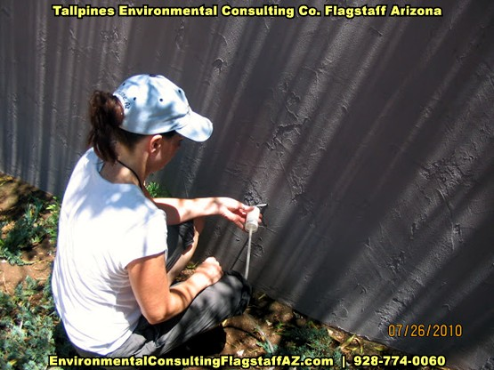Tallpines Environmental Consulting - 928-774-0060 - Arizona - CONTRACT DESIGN SPECIFICATIONS