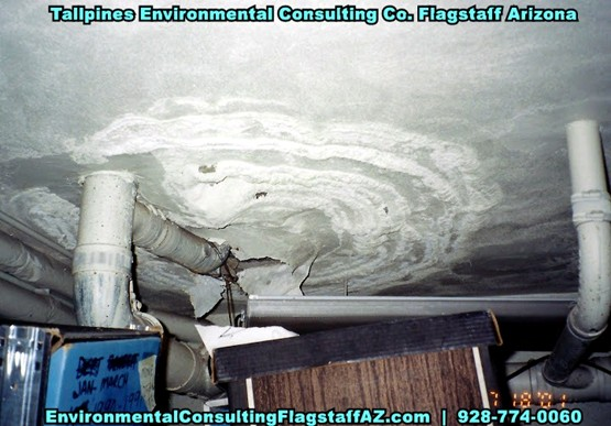 Tallpines Environmental Consulting - 928-774-0060 - Southern AZ - ASBESTOS TESTING SERVICES