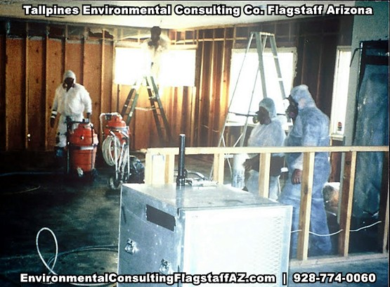 Tallpines Environmental Consulting - 928-774-0060 - Northern AZ - NATIONAL POLLUTION DISCHARGE ENVIRONMENTAL STUDY NPDES PERMIT