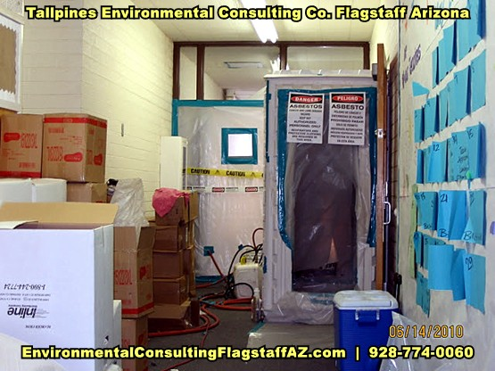 Tallpines Environmental Consulting - 928-774-0060 - Phoenix Metro - MICROBIAL ASSESSMENTS